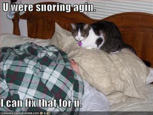 Yep, I need this cat.