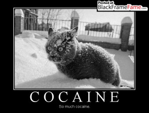 COCAINE So much cocaine