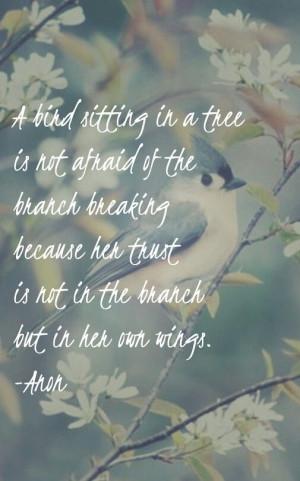 bird sitting in a tree is not afraid of the branch breaking because ...