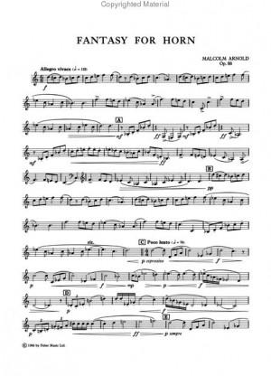 TODO TROMPA ( All French Horn). Blog dedicado al mundo de la trompa.