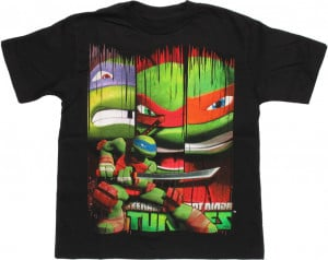 Ninja-Turtles-Leonardo-Banners-Juvenile-T-Shirt.jpg