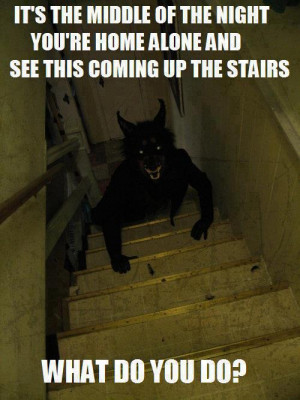 funny Halloween prank werewolf
