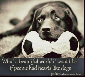 on dogs. If only people had hearts like dogs.. Dogs Quotes, Crazy Dogs ...