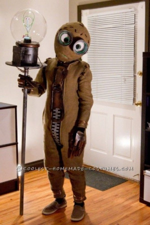 Found on ideas.coolest-homemade-costumes.com