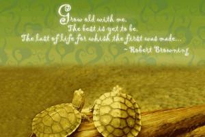 True Cute Best Love Quote