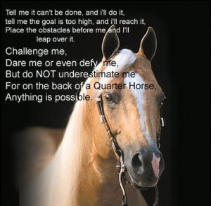 quotes about your horse