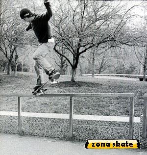 galeria de fotos de skate bam margera