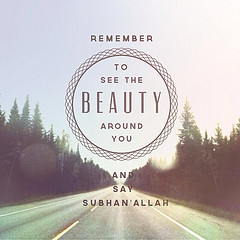 Road Trip Quotes And Sayings (lionofallah) tags: travel