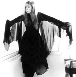Stevie Nicks Rumours Dress