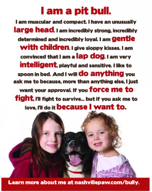 Bully Breed Education & Resources
