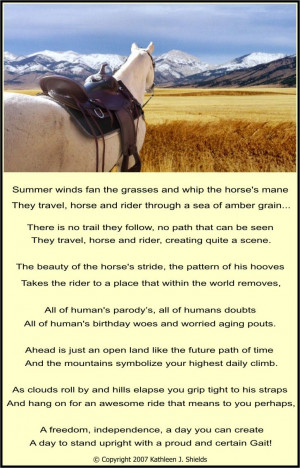 Horse Poems And Quotes Funny horse poems