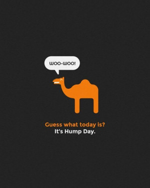 ... funny hump day sayings 1 funny hump day sayings 2 funny hump day