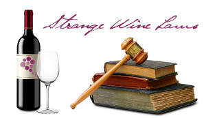 Famous Wine Quotes Funny Traditional wine quotes