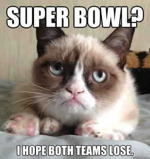 grumpy-cat-on-the-super-bowl.jpg