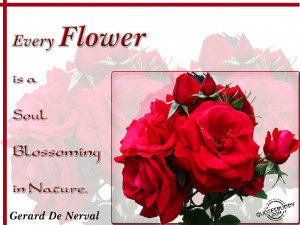 Every Flower Is A Soul Blossoming In Nature - Flower Quote