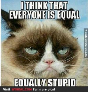 Grumpy Cat Sayings Cute...