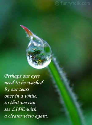 Our Eyes Need To Be Washes By Our Tears Once In A While So That We ...
