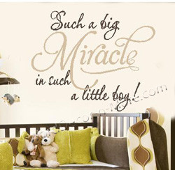 1082 SUCH A BIG MIRACLE Boy Nursery Wall Quote