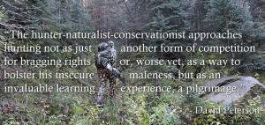 Turkey Hunting Quotes