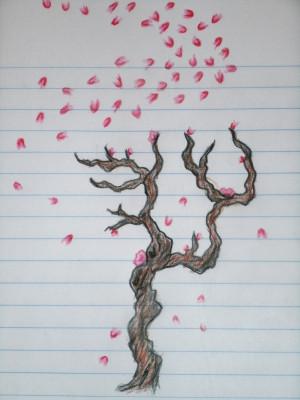 Cherry Tree Blossom Sketch