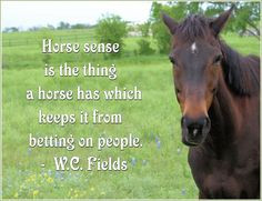 horse photo with quote by WC Fields, horse sense, photo by Valerie ...