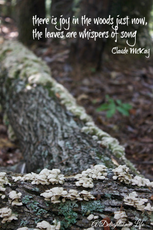 DELIGHTSOME-LIFE-JOY-IN-THE-WOODS-QUOTE