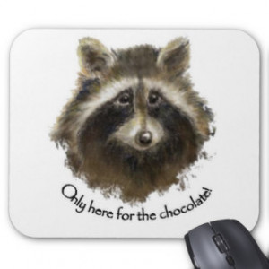 Funny Raccoon Sayings Gifts - T-Shirts, Posters, & other Gift Ideas