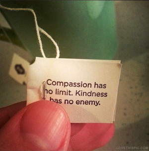 kindness quotes tumblr beautiful kindness quote