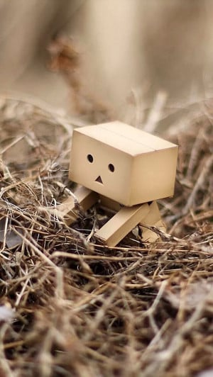 Danbo The Box Man iPhone 5 / 5S / 5C Wallpaper