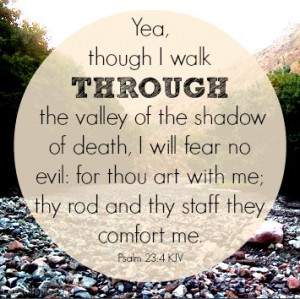 Psalm 23:4 quotes photography outdoors nature evil death bible verse