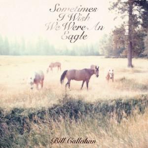 Bill Callahan: Sometimes I Wish We Were an Eagle