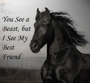 this quote before and I believe it applies to more than just horses ...