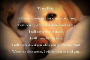 To my puppy Chloe :) love her soooo much