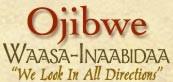 Basic Ojibwe Words and Phrases