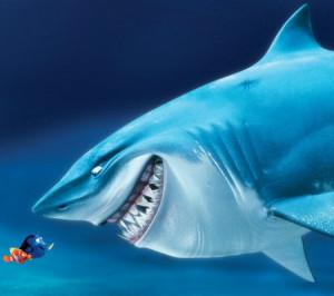 Bruce Finding Nemo Bruce-finding-nemo-still-