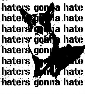 Hate Haters Poems Picfly Html
