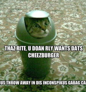 funny-pictures-of-animals-and-sayings_4.jpg