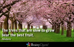 Quotes On Importance Of Nature