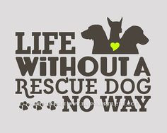 Rescue Dog Quote Wall Decor Choose Fine Art Gallery by ThePawPrint, $ ...