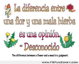 Funny Quotes For Facebook Status In Spanish #1