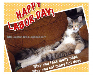 Funny labor day quotes cat