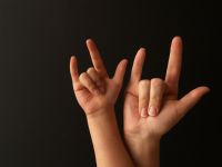 The members of Deaf culture do share a language...American Sign ...