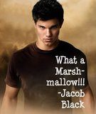 Jacob Black Quote Graphics | Jacob Black Quote Pictures | Jacob Black ...
