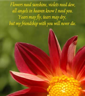 an angel to watch heaven my quotes about heaven gained