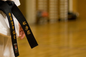 Effective Martial Arts Traits Every Writer Should Have