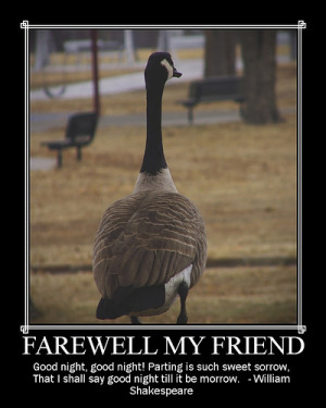 funny goodbye quotes. Funny Birthday Quotes; Funny