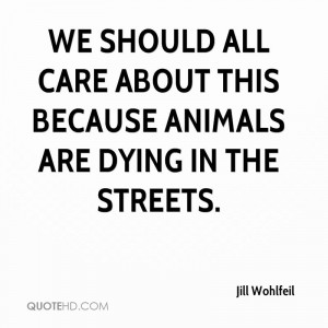 We should all care about this because animals are dying in the streets ...