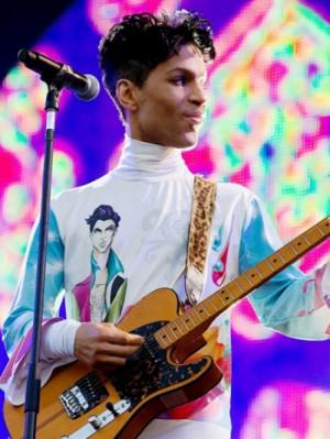 Prince naar Nederland