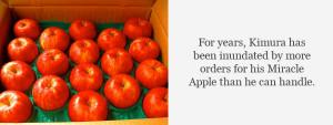 apple-quotes-8.jpg