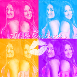 The Bella Twins Formspring Background
